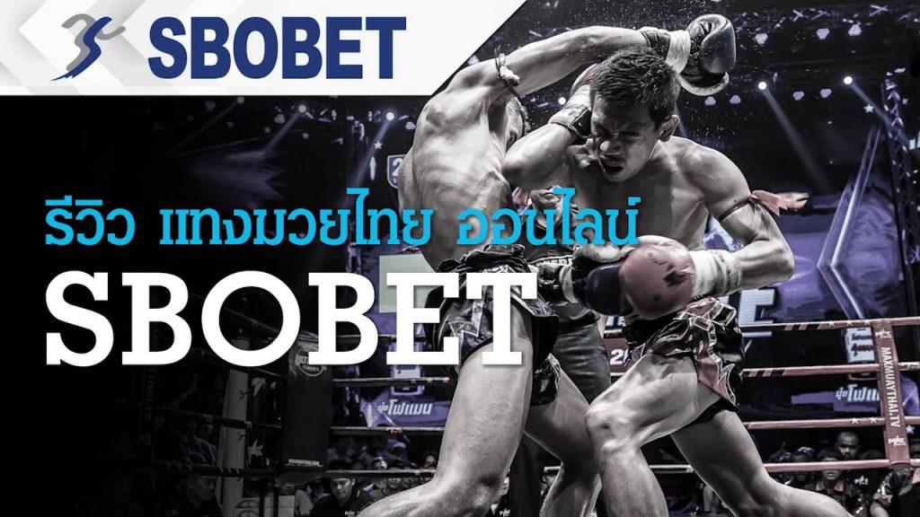 เเนะนำพนันมวยไทย กีฬาการต่อสู้ที่ต้องใช้ความแข็งเเรงของร่างกาย
